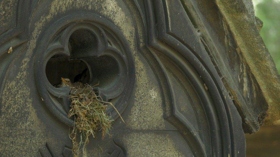 FUNECAP GROUPE Eternel jardin chapelle cimetière du Père Lachaise