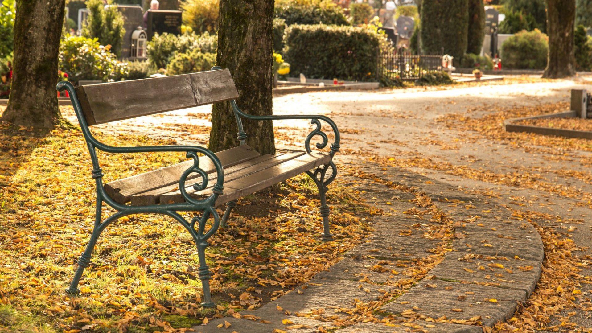 banc automne