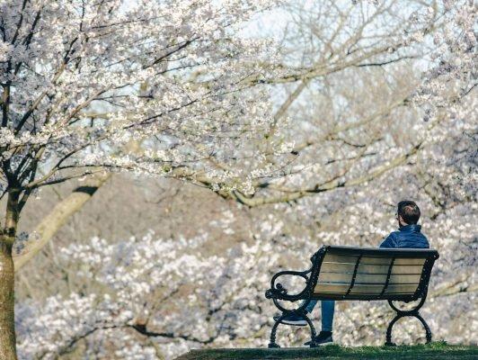 Photo d'un homme sur un banc